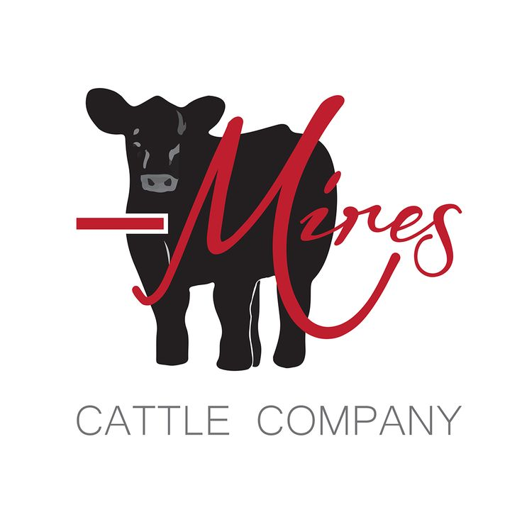 Cattle Company Coupons & Promo Codes